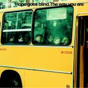 Alpha - hope goes blind - Don't Touch