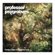 Professor Psygrooves - Foreign Pulses and Borderline Dubs - Jarring Effects