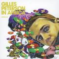 Gilles Peterson - in africa