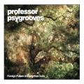 Professor Psygrooves - Foreign Pulses and Borderline Dubs